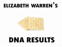 Memes, 🤖, and Dna: ELIZABETH WARRENS  DNA RESULTS (GC)