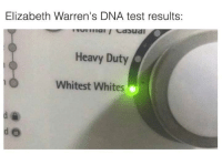 Memes, Test, and 🤖: Elizabeth Warren's DNA test results:  Heavy Duty  Whitest Whites (GC)