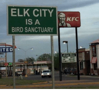 "Memes, Trap, and Drive: ELK CITY KE  IS A  BIRD SANCTUARY  ITED  drive thru  THEREBACK  0DOLLAR <p>It's a trap! via /r/memes <a href=""https://ift.tt/2NJHfz4"">https://ift.tt/2NJHfz4</a></p>"