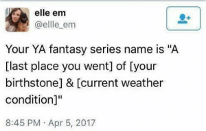 """School, Target, and Tumblr: elle em  @ellle_em  Your YA fantasy series name is """"A  [last place you went] of [your  birthstonel & [current weather  condition]""""  8:45 PM Apr 5, 2017 swingsetindecember: dancinbutterfly: A House of Pearl  Rain A BATHROOM OF GARNET AND SUN   A School of Garnet and Clouds"""