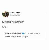 tell your dog i love them, thanks: Ellek Linton  @elleklinton  My dog: *breathes*  Me:  Chance The Rapper@chancetherapper  I will cross the ocean for you tell your dog i love them, thanks