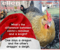 Memes, Chicken, and Ellen: ellen  What's the  difference between  Santa's reindeer  and a knight?  One slays a dragon  and the other's  draggin' a sleigh  The Chicken Chak :)