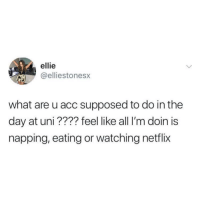 Netflix, Acc, and Uni: ellie  eliestonesx  what are u acc supposed to do in the  day at uni ???? feel like all I'm doin is  napping, eating or watching netflix
