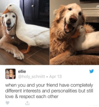 """Friends, Love, and Respect: ellie  @holy_schnitt Apr 13  when you and your friend have completely  different interests and personalities but still  love & respect each other <p>Unlikely Friends via /r/wholesomememes <a href=""""https://ift.tt/2r7HVEt"""">https://ift.tt/2r7HVEt</a></p>"""
