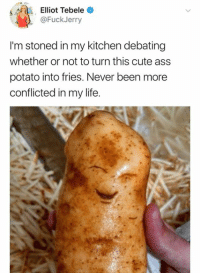 Ass, Cute, and Life: Elliot Tebele  @FuckJerry  I'm stoned in my kitchen debating  whether or not to turn this cute ass  potato into fries. Never been more  conflicted in my life