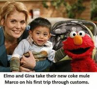 Elmo and Gina take their new coke mule  Marco on his first trip through customs. Packing.