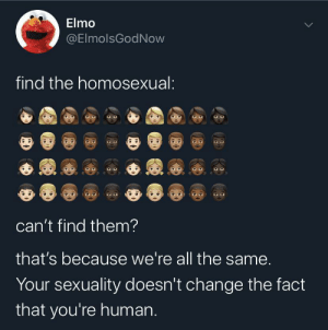 Elmo being wholesome as always: Elmo  @ElmolsGodNow  find the homosexual:  can't find them?  that's because we're all the same.  Your sexuality doesn't change the fact  that you're human. Elmo being wholesome as always