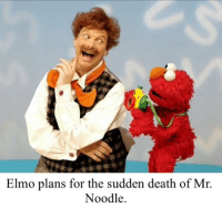 Elmo plans for the sudden death of Mr.  Noodle.