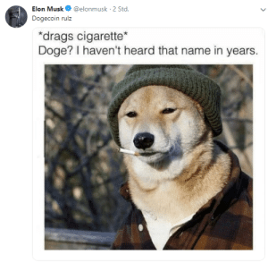 Doge a few years later by MikeyReck MORE MEMES: Elon Musk@elonmusk 2 Std  Dogecoin rulz  drags cigarette  Doge? I haven't heard that name in years. Doge a few years later by MikeyReck MORE MEMES