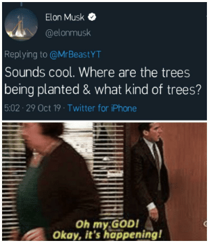 our saviour is here: Elon Musk  @elonmusk  Replying to @MrBeastYT  Sounds cool. Where are the trees  being planted & what kind of trees?  5:02 29 Oct 19 Twitter for iPhone  Oh my GOD!  Okay, it's happening! our saviour is here