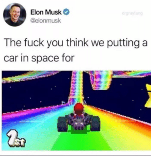 Fuck You, Memes, and Fuck: Elon Musk  @elonmusk  The fuck you think we putting a  car in space for Dammit, Elon! via /r/memes https://ift.tt/2H0AFDk