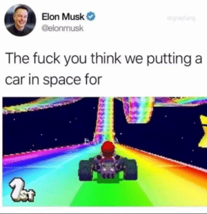 Fuck You, Fuck, and Space: Elon Musk  @elonmusk  The fuck you think we putting a  car in space for