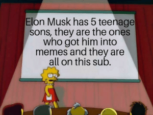 Dank, Memes, and Target: Elon Musk has 5 teenage  sons, they are the ones  who got him into  memes and they are  all on this sub They could be any of us by Palana MORE MEMES