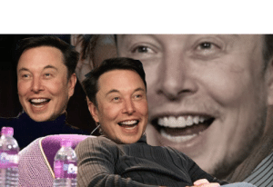 Elon Musk version of the Tom Cruise laughing template: Elon Musk version of the Tom Cruise laughing template