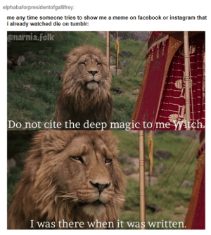 Facebook, Gandalf, and Instagram: elphabaforpresidentofgallifrey  me any time someone tries to show me a meme on facebook or instagram that  i already watched die on tumblr:  onarnia.folk  Do not cite the deep magic to  me Witch  I was there when it was written I was there, Gandalf. I was there three thousand years ago.