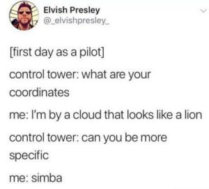 Me irl: Elvish Presley  @elvishpresley  [first day as a pilot]  control tower: what are your  coordinates  me: I'm by a cloud that looks like a lion  control tower: can you be more  specific  me: simba  > Me irl