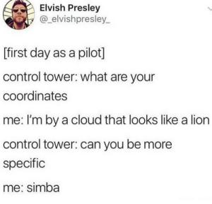 .: Elvish Presley  @_elvishpresley  L  [first day as a pilot]  control tower: what are your  coordinates  me: I'm by a cloud that looks like a lion  control tower: can you be more  specific  me: simba .