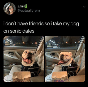 Friends, Sonic, and How: Em  @actually_em  i don't have friends so i take my dog  on sonic dates  SONIC how can you say no to that face