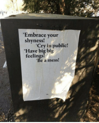 Big, Cry, and Public: Embrace your  shyness  Cry in public!  Have big big  feelings  Be a mess!