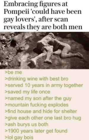 Ash, Drinking, and Fucking: Embracing figures at  Pompeii 'could have been  gay lovers', after scan  reveals they are both men  be me  drinking wine with best bro  served 10 years in army together  >saved my life once  named my son after the guy  mountain fucking explodes  find house and hide for shelter  give each other one last bro hug  ash burys us both  1900 years later get found  >lol gay bois meirl