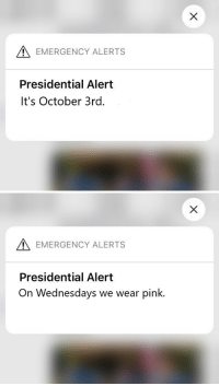 i made these in honor of mean girls : EMERGENCY ALERTS  Presidential Alert  It's October 3rd.   EMERGENCY ALERTS  Presidential Alert  On Wednesdays we wear pink. i made these in honor of mean girls