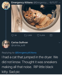 Memes, Sneakers, and Black: Emergency Kittens @Emrgency... 6/11/17  38  1,989  1,989 05,454  5454  Carisa Sullivan  @carisa_sulli  Replying to @EmrgencyKittens  I had a cat that jumped in the dryer. We  did not know. Thought it was sneakers  making all that noise. RIP little black  kitty. Sad pic :(
