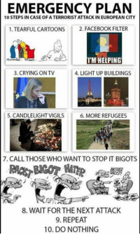 Bad, Crying, and Facebook: EMERGENCY PLAN  10 STEPS IN CASE OF A TERRORIST ATTACK IN EUROPEAN CITY  1. TEARFUL CARTOONS 2. FACEBOOK FILTER  I'M HELPING  3. CRYING ON TV  4.LIGHT UP BUILDINGS  5. CANDLELIGHT VIGILS  6. MORE REFUGEES  7. CALL THOSE WHO WANT TO STOP IT BIGOTS  RACIST  8. WAIT FOR THE NEXT ATTACK  9. REPEAT  10. DO NOTHING It is truly saddening how true this is, that this has become a literal pattern that can be predicted with near accuracy because of the frequency.  Almost as if there's a common factor no matter where you point your finger on the map of countries that have undergone massive and unvetted migration, but who knows. As Macron said, we, the regular folk, just have to live with terrorism like a bad thunderstorm that comes and goes at the drop of a hat. How much longer are people going to put up with this? For the sake of the future lives that we all know will be at stake, hopefully, not much longer.