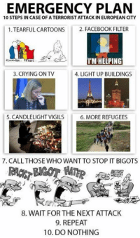 Sent by Riya, a patriot.: EMERGENCY PLAN  10 STEPS IN CASE OF ATERRORIST ATTACK IN EUROPEAN CITY  1 TEARFUL CARTOONS  2. FACEBOOK FILTER  I'M HELPING  3. CRYING ONTV  4. LIGHT UP BUILDINGS  5. CANDLELIGHTVIGILS  6. MORE REFUGEES  7. CALL THOSE WHO WANTTO STOP IT BIGOTS  8. WAIT FOR THE NEXT ATTACK  9. REPEAT  10. DO NOTHING Sent by Riya, a patriot.