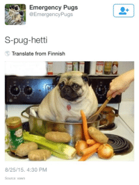 pictures of pugs: Emergency Pugs  @Emergency Pugs  S-pug-hetti  Translate from Finnish  8/25/15. 4:30 PM  Source: vawn