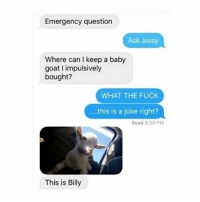 Memes, Goat, and Fuck: Emergency question  Ask away  Where can I keep a baby  goat I impulsively  bought?  WHAT THE FUCK  this is a joke right?  Read 6:30 PM  This is Billy 😂😂😂lol