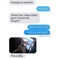 Baby, It's Cold Outside, Dank, and Fucking: Emergency question  Ask away  Where can keep a baby  goat l impulsively  bought?  WHAT THE FUCK  this is a joke right?  Read 6:30 PM  This is Billy #BabyGoat 😭😻