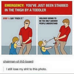 """chairman: EMERGENCY: YOU'VE JUST BEEN STABBED  IN THE THIGH BY A TODDLER  STEP 1:SAY """"FUCK IT.""""  VIOLENCE SEEMS TO  BE THE ONLY ANSWER  PEOPLE UNDERSTAND  chairman-of-th3-board:  l still lose my shit to this photo."""