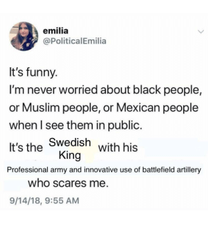 Funny, Muslim, and Army: emilia  @PoliticalEmilia  It's funny.  I'm never worried about black people,  or Muslim people, or Mexican people  when I see them in public.  It's the Swedish  Professional army and innovative use of battlefield artillery  with his  King  who scares me  9/14/18, 9:55 AM Gustav II Adolf Of Sweden