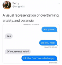 "Memes, Anxiety, and Angry: Emily  @emgrebz  A visual representation of overthinking,  anxiety, and paranoia  resteraay TT.TO PIv  Are you up  Yes  are you mad  Read 12:00 AM  Of course not, why?  ldk the ""yes"" sounded angry  Delivered It does sound like an angry ""Yes"" memesapp"