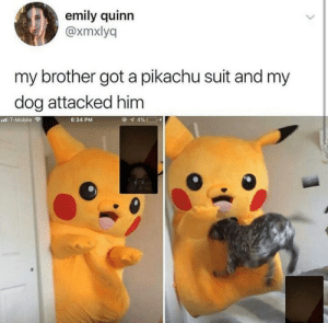 caucasianscriptures:Calm down boy.: emily quinn  @xmxlyq  my brother got a pikachu suit and my  dog attacked him  IT-Mobile  6:34 PM caucasianscriptures:Calm down boy.