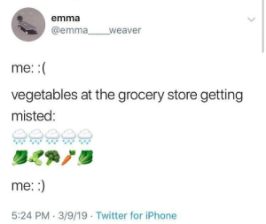 Iphone, Twitter, and Emma: emma  @emma weaver  me::  vegetables at the grocery store getting  misted:  me::  5:24 PM 3/9/19 Twitter for iPhone I may not be hydrated, but at least the grocery store vegetables are!