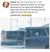 Deer, Funny, and Police: emme @emmethompsonn 23hv  someone called the police on my dog  because he ran away and attackeda  deer and i know this is serious but the  sight of him in the cop car i'm  alskdjfhsgh Free my boy Rex