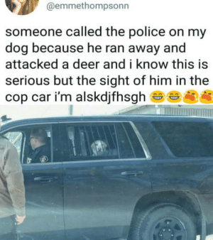 Deer, Police, and Good: @emmethompsonn  someone called the police on my  dog because he ran away and  attacked a deer and i know this is  serious but the sight of him in the  cop car i'm alskdjfhsgh>  龜@ Good boy busted