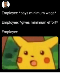 Minimum Wage, You, and What: Employer: *pays minimum wage*  Employee: *gives minimum effort*  Employer: You get what you paid for 🤷🏿‍♂️
