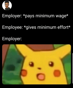 Dank, Memes, and Target: Employer: *pays minimum wage*  Employee: *gives minimum effort*  Employer: You get what you paid for 🤷🏿‍♂️ by Kwibuka MORE MEMES