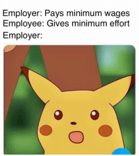 Effort, Employee, and Minimum: Employer: Pays minimum wages  Employee: Gives minimum effort  Employer: