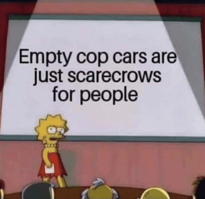 Very profound!: Empty cop cars are  just scarecrows  for people Very profound!