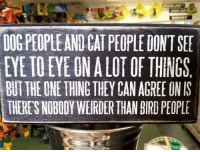Memes, 🤖, and Dog: en  DOG PEOPLE AND CAT PEOPLE DONT SEE  EYE IO EYE GN A LOT OF THINGS  BUT THE ONE THING THEY CAN AGREE ON IS  THERE'S NOBODY WEIRDER THAN BIRD PEOPLE