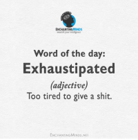 Shit, Word, and Net: ENCHANTINGMINDS  nourish your intelligence  Word of the day:  Exhaustipated  (adjective)  Too tired to give a shit.  ENCHANTINGMINDS. NET