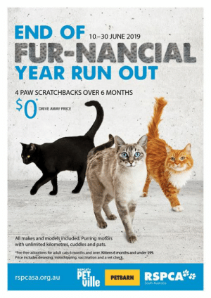 "Cats, Family, and Life: END OF  FUR-NANCIAL  YEAR RUN OUT  10-30 JUNE 2019  4 PAW SCRATCHBACKS OVER 6 MONTHS  $0  DRIVE AWAY PRICE  All makes and models included. Purring motors  with unlimited kilometres, cuddles and pats.  ""Fee free adoptions for adult cats 6 months and over Kittens 6 months and under $99.  Price includes desexing, mirochipping, vaccination and a vet check.  RSPCAPa  PET  Uille  RSPCA  PETBARN  rspcasa.org.au  South Australia 9 DAYS TO GO 🎉🎉🎉 That's right folks, you have just nine days left to adopt a new family member in this fur-nancial year! If you think you're ready for a furry friend in your life - how can you resist an offer like this?  Fee free adoption for adult cats (6 months and over) Kittens (6 months and under) $99 (regularly $195). All inclusive package: desexing, mirochipping, vaccination and a vet  check.  🚨 This offer runs out of shelters on Sunday June 30, so don't miss out! 📍 Locations: RSPCA PetVille, RSPCA Stepney, RSPCA Lonsdale and selected participating PetBarn stores. Opening hours vary store to store ☎️ For more information on opening times and participating Petbarn stores, please call your preferred location ahead of time.  Cats available ➡️ www.rspcasa.org.au/adopt-a-pet/cat Kitten available ➡️ www.rspcasa.org.au/adopt-a-pet/kitten"