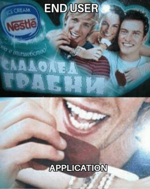 End users in a nutshell: END USER  CE CREAM  Nestle  URUNebcmeo  ΕΛΛΛΟΑΕΑ  TDAEH  APPLICATION End users in a nutshell