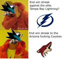 Fucking, Logic, and Memes: End win streak  against the elite  Tampa Bay Lightning?  @nhl ref logic  End win streak to the  Arizona fucking Coyotes It never ceases to blow my mind how the Sharks can beat the best in the league but consistently lose to the worst teams