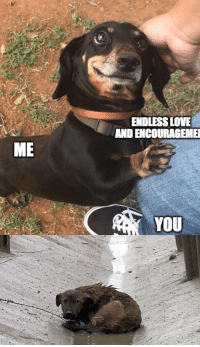 Love, Endless Love, and Irl: ENDLESS LOVE  AND ENCOURAGEME  ME  YOU me irl