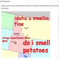 Ironic, Montana, and Gay: endropsyche:  does anyone else think that the borders of Idaho and Montana kind of look  like faces  idaho u smellin  fine  stop montana aas  gay  potatoes