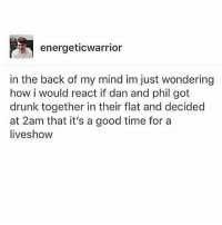 energeticwarrior  in the back of my mind im just wondering  how i would react if dan and phil got  drunk together in their flat and decided  at 2am that it's a good time for a  liveshow I would screech -sunny